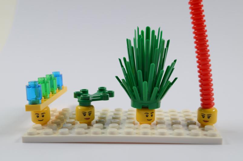 Lego Serious Play: Neurodiversity in HE